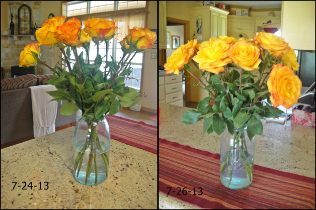 before after flowers